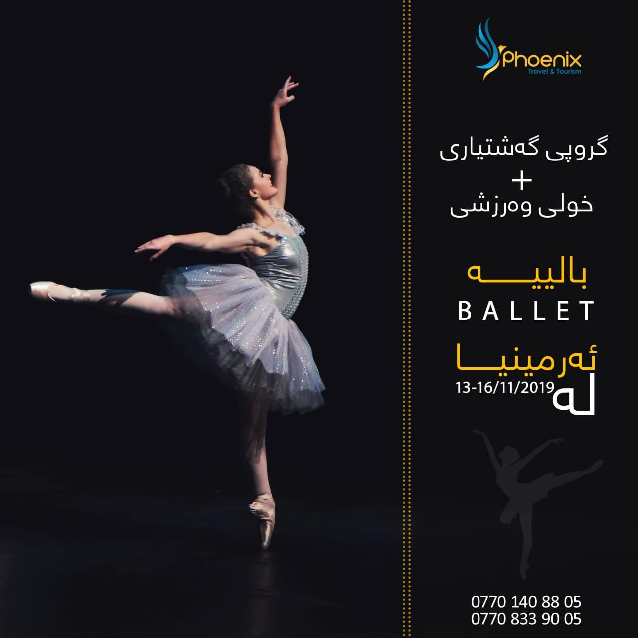 Become a ballet trainer